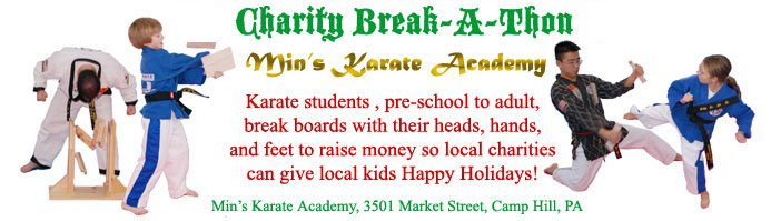 Banner graphic for Karate Charity Break-A-Thon in Camp Hill PA          February 22, 2014